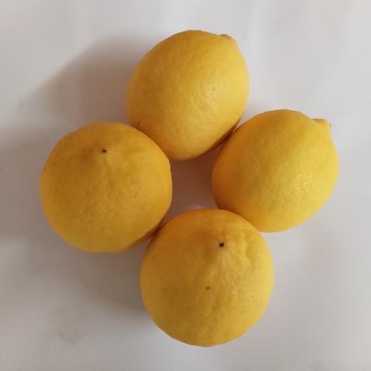 资阳安岳县安岳柠檬 【包邮】6斤装一级大果皮薄多汁榨汁酵素切片奶茶店供应。