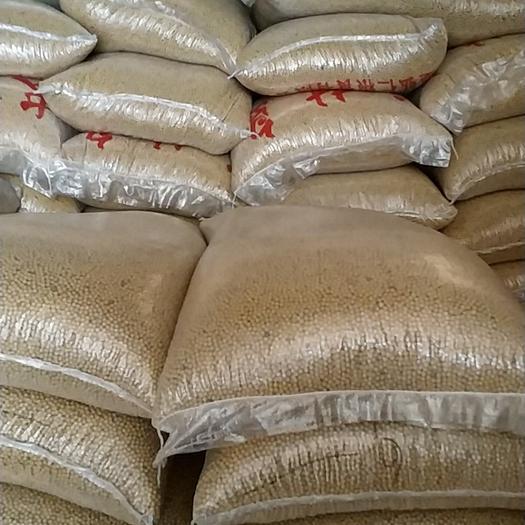 徐州新沂市 国产高蛋白大豆非转基因