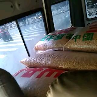 长沙望城区东北黑龙江大豆 生大豆 1等品