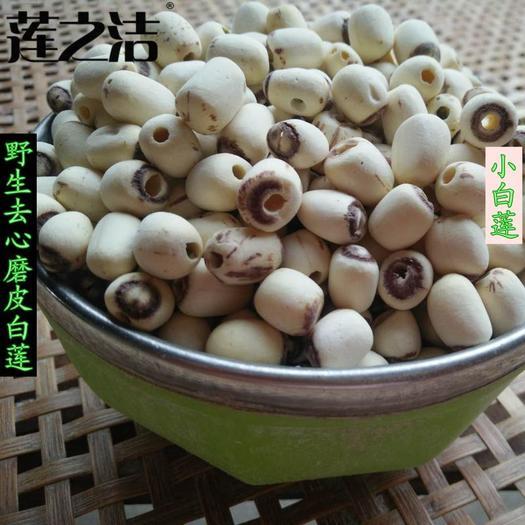 湘潭县 小颗粒磨皮白莲,去心白莲子,非湘莲,2019年新货上市