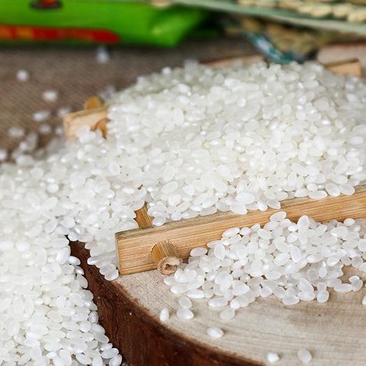黑山縣 東北大米 弱堿大米 胚芽大米 新米包郵 一件代發 盤錦大米