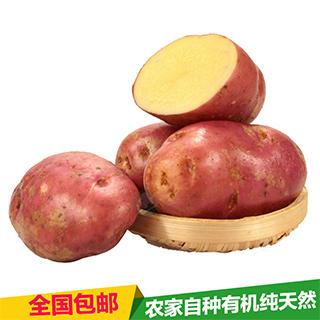 昆明东川区 农家自种9斤新鲜蔬菜红皮土豆黄心土豆马铃薯5斤包邮马铃薯