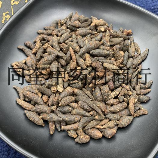 菏澤鄄城縣 同奎中藥材商行   香附   三棱草