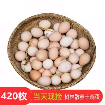 大量出售整箱420枚新鲜正宗农村散养土鸡蛋草鸡蛋柴鸡蛋