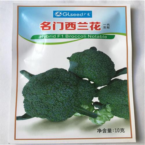 济南历城区 日本名门西兰花种子比耐寒优秀还耐寒的西兰花品四季蔬菜花菜种籽