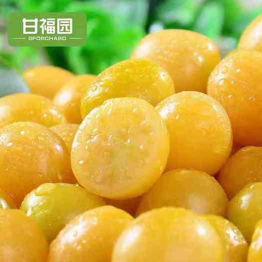 深圳灯笼果 甘福园 东北姑娘果斤新鲜当季水果