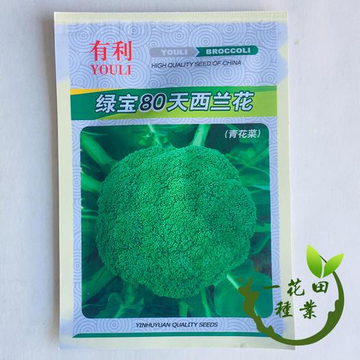 宿州灵璧县 西兰花种子西兰花高产种子绿宝80天西兰花种子