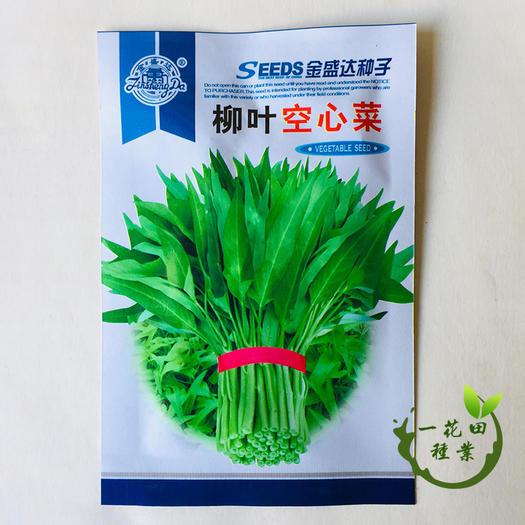 宿州灵璧县 空心菜种子柳叶空心菜种子大叶空心菜种子白梗柳叶空心菜种子