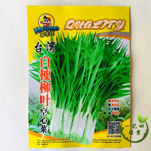 宿州灵璧县 空心菜种子大叶空心菜种子柳叶空心菜种子白梗柳叶空心菜种子
