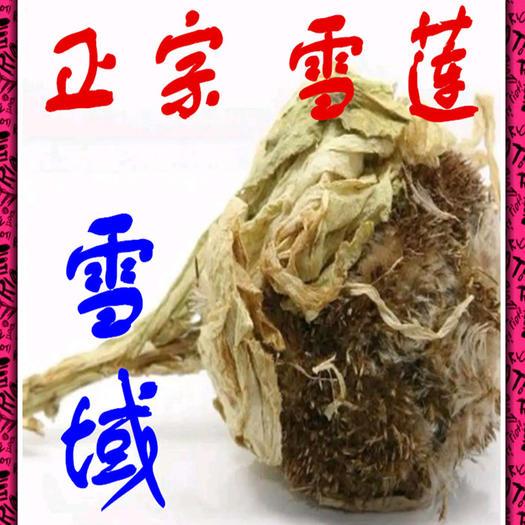 西寧城東區 高原雪蓮完整的花正宗天然雪蓮/朵全國包郵發貨
