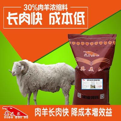 徐州铜山区 羊饲料增肥促生长肉羊育肥浓缩料全阶段羊浓缩料