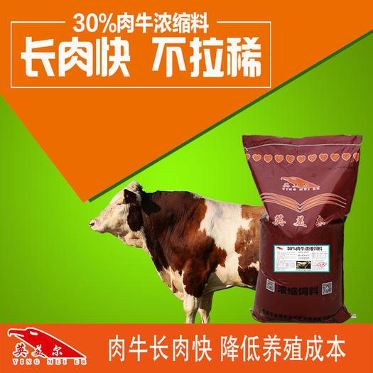 徐州铜山区 牛浓缩料全阶段使用肉牛催肥饲料