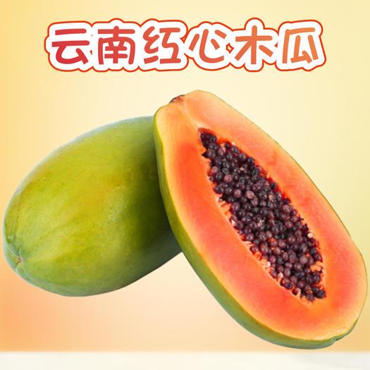马关县 云南红心木瓜特产甜新鲜丰胸孕妇牛奶水果整箱批发包邮海南广西