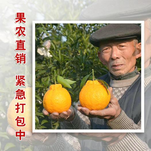 眉山東坡區 四川丑橘不知火丑柑應季水果產地直供5斤10斤包郵