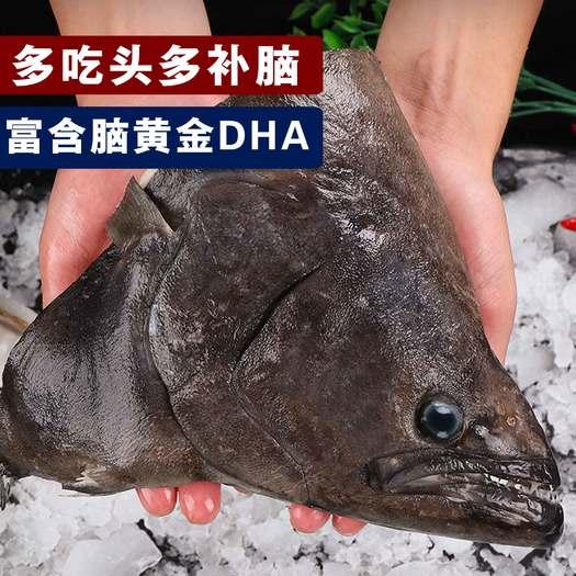 连云港赣榆区 包邮深海进口新鲜比目鱼格林兰碟鱼头 牙片鱼头
