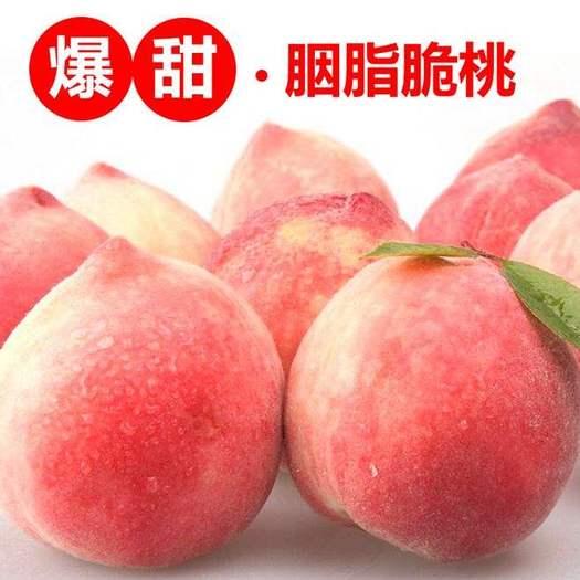 成都新津縣 單果六兩以上,精品禮盒裝。成都本地,生態種植,胭脂脆桃。