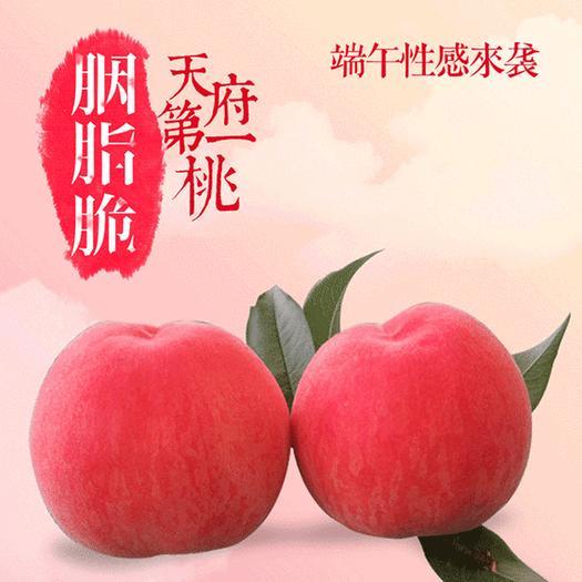 成都新津縣 單果四兩以上,精品禮盒裝。成都本地,生態種植,胭脂脆桃。