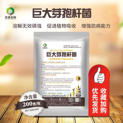 南宁良庆区有机肥料 巨大芽孢杆菌100亿磷细菌降解土壤有机磷提高肥效增产解磷菌
