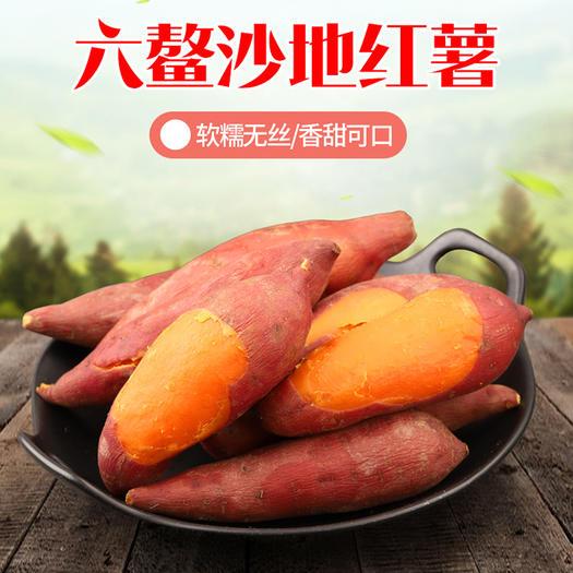 漳浦縣六鰲地瓜 精品赤沙六鰲紅密薯