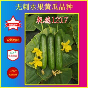 水果黄瓜种子 乾德1217,寿光最美小黄瓜品种,秋延,早春