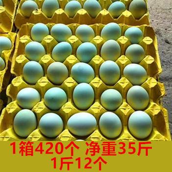 绿壳鸡蛋  常年全国批发整箱420个一斤12个11个土鸡蛋绿壳蛋乌鸡蛋