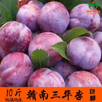 【坏果包赔】赣南红心三华李现摘现发10斤装新鲜水果孕妇李子