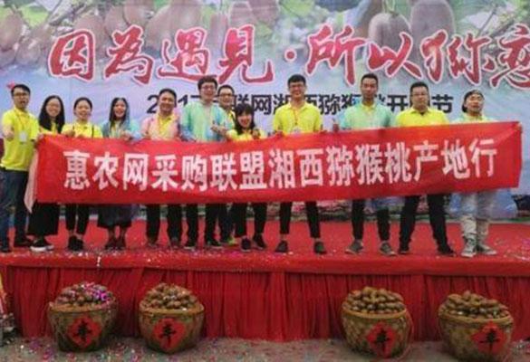 湘西猕猴桃搭上互联网+快车 惠农助力产业升级