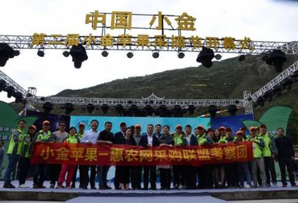 惠农网助力四川小金苹果上行 政企合力推动产业升级