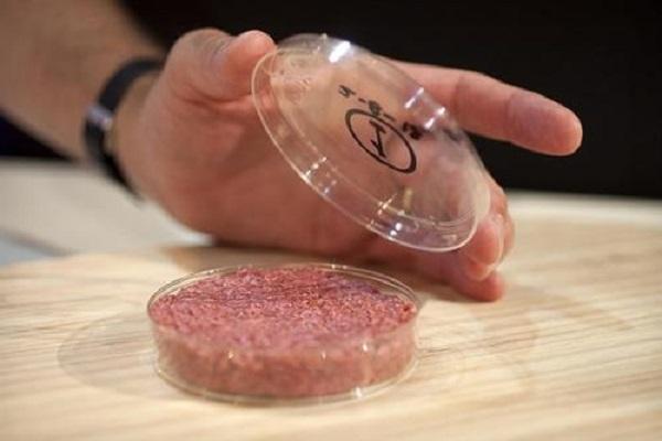中国第一块人造培养肉诞生!口感怎样?对动物肉市场有何影响?