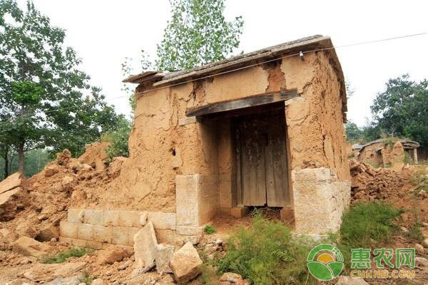 农村一户一宅违建是怎么出现的?如何处理?