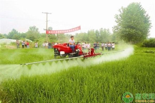 教育部:正在布局新型农林学科建设和人才培养,农林教