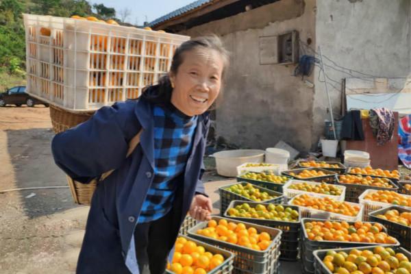 泸溪椪柑文旅节1月10日开幕,将邀百万粉丝网红助力消费扶贫