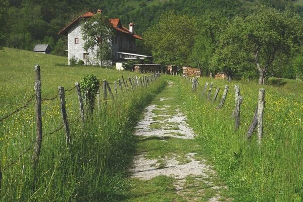 农村宅基地新政策,有宅基地的一定要看看!