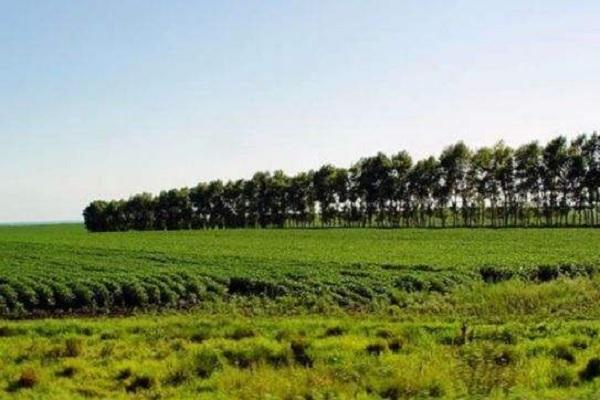 我国耕地土壤污染有哪些分类?土壤污染防治法你知多少?
