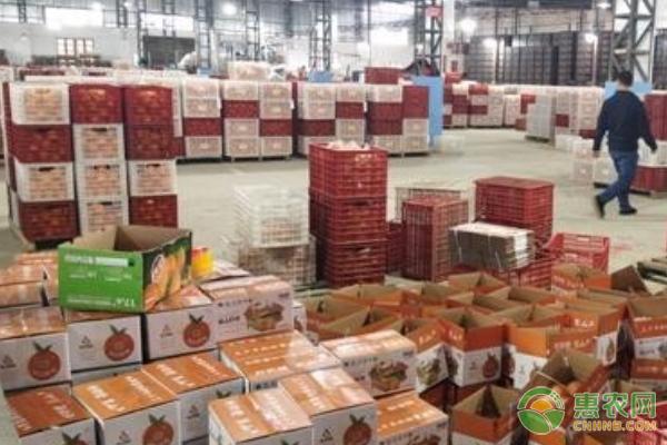 凝心聚力,抗疫助农:新宁县携惠农网创崀山脐橙销量新高