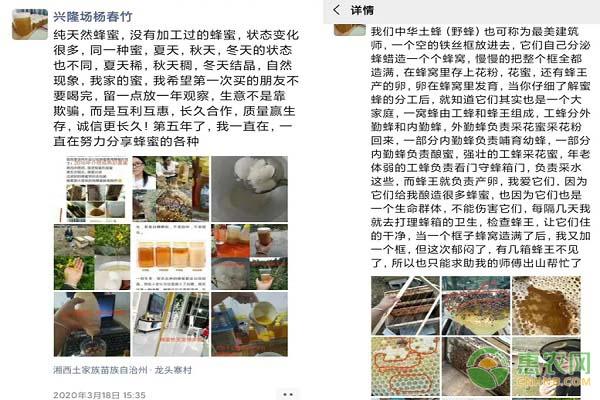 从上海到泸溪兴隆场,她的蜂蜜刷屏了朋友圈!