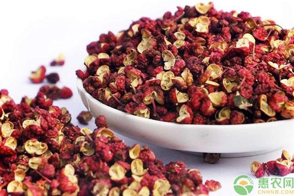 红花椒和青花椒的区别在哪?如何判断花椒质量?