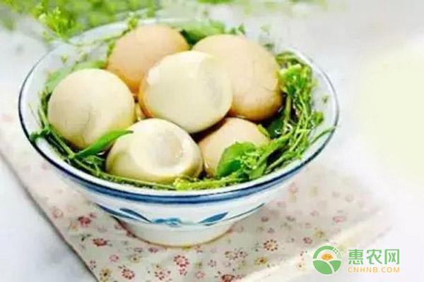 三月三吃地菜煮鸡蛋是什么原因?