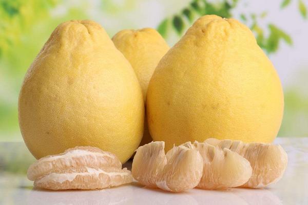 全国柚子产地分布和品种大全
