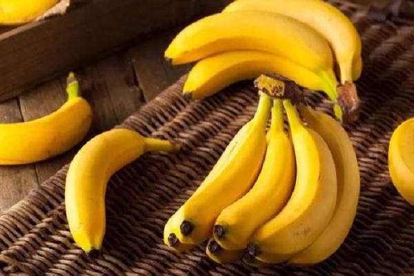 香蕉的产量表现如何?不同香蕉品种的产量大全