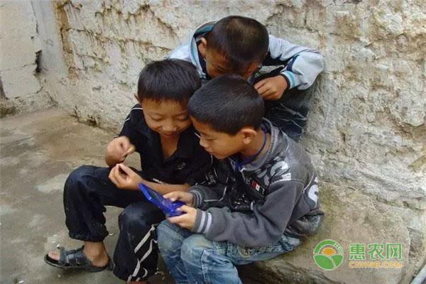 中国人口出生率为何创新低?人口发展有什么规律?
