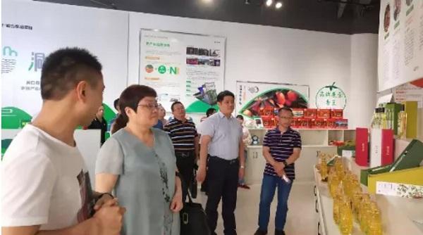 邵阳县领导率团考察我县电商工作