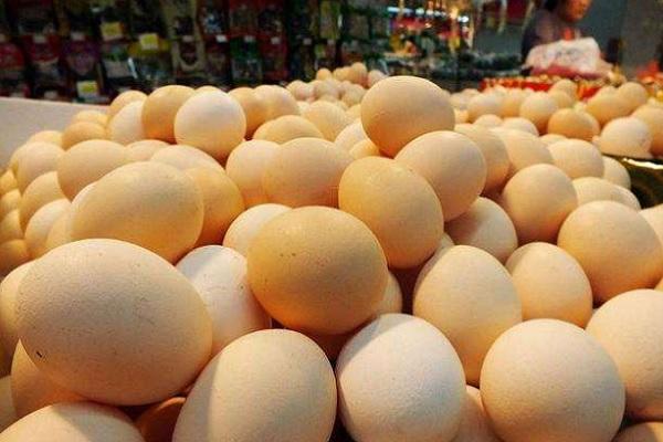 2020下半年全国鸡蛋价格行情预测(附今日鸡蛋价格)