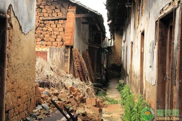 农村土坯房改造补贴需满足哪些条件?一户有多少补贴?