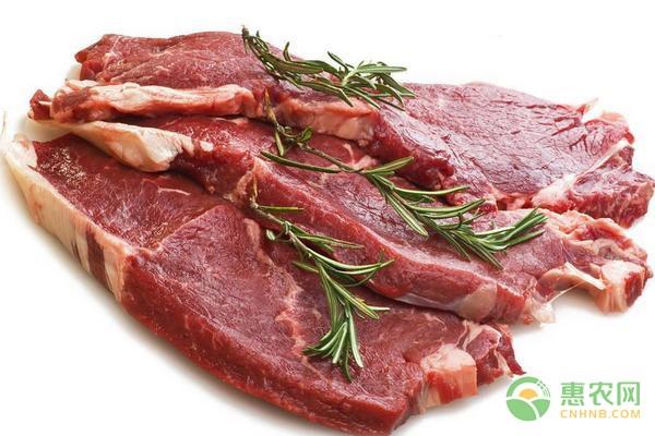 2020年6月份全国牛羊肉价格行情预测
