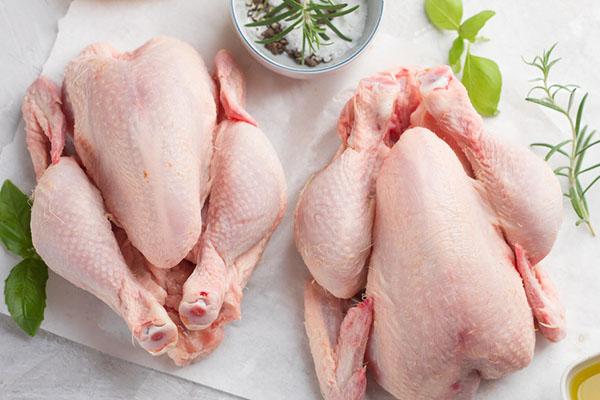 2020年6月份全国鸡肉价格行情预测