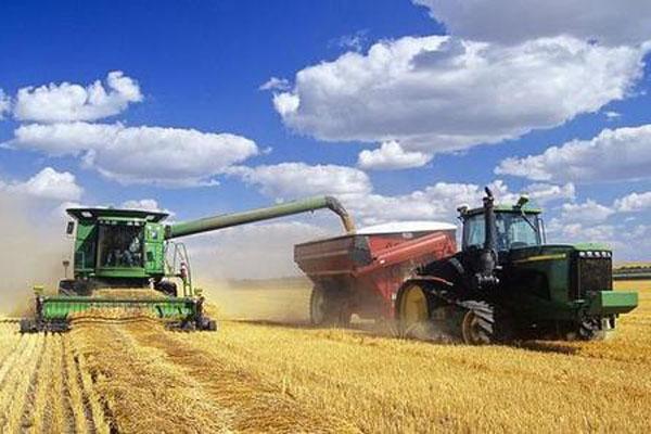 粮食直补2020年还有吗?什么时候下发?