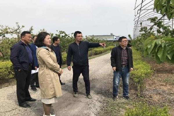 农业农村部印发2020年高素质农民培育工作通知