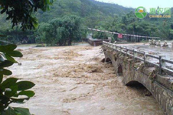 中央气象台已连发27天暴雨预警,这几个城市的暴雨较严重