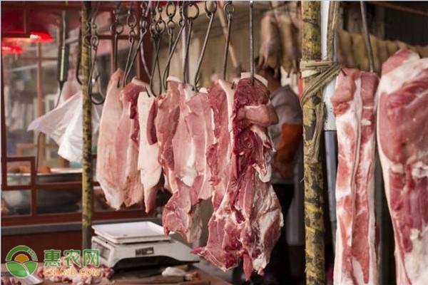 今日猪肉价格多少钱一斤?2020年6月29日全国生猪价格行情